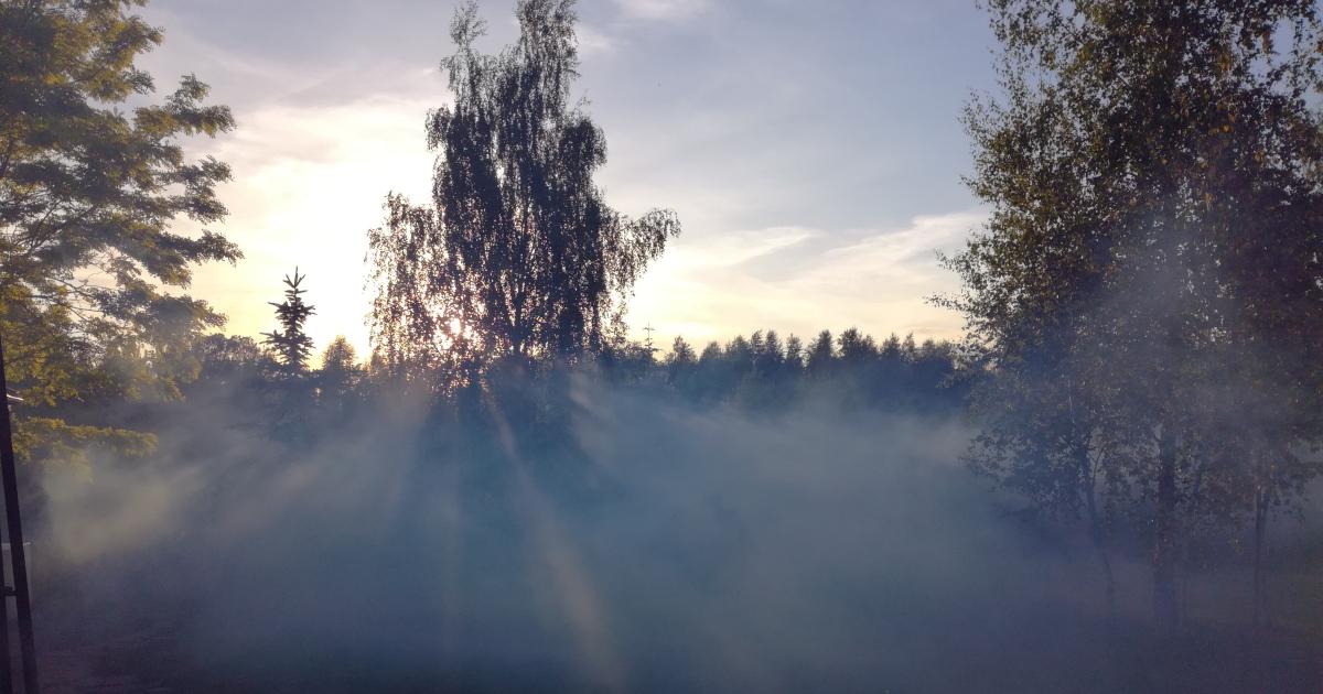 Odkomarzanie terenów zielonych